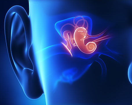 Middle Ear Analysis